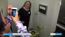Royaume-Uni : un WC en or massif dérobé