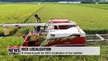 Life & Info: S. Korea to push for localization of rice varieties