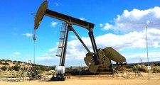 Bakan Dönmez: Yurt içi petrol üretiminde son 20 yılın en yüksek seviyesine ulaştık