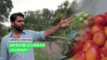 Green Heroes: The urban experience just got a sustainable upgrade