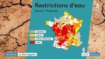 Sécheresse : plusieurs départements en crise