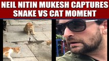 Neil Nitin Mukesh posts video showing four cats fight a snake, video viral | Oneindia News