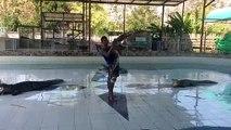 Ce dresseur s'amuse à danser avec des crocodiles... Risqué