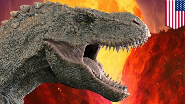 Chicxulub crater rocks record aftermath of dino-killing asteroid