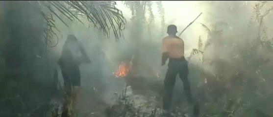 Kebakaran hutan: Sebagian Besar Karena Ulah Manusia