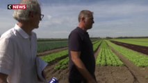Sécheresse : les agriculteurs et les industriels appelés à respecter les restrictions d'eau