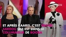 Booba critiqué par Michel Sardou, il réplique