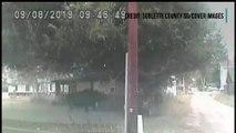 La police du Wyoming a utilisé un taser pour aider un élan coincé dans un hamac