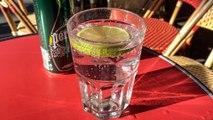 Paris : ces bistrots qui vont jusqu'à facturer la rondelle de citron
