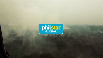 Indonesian forest fires choke SE Asia