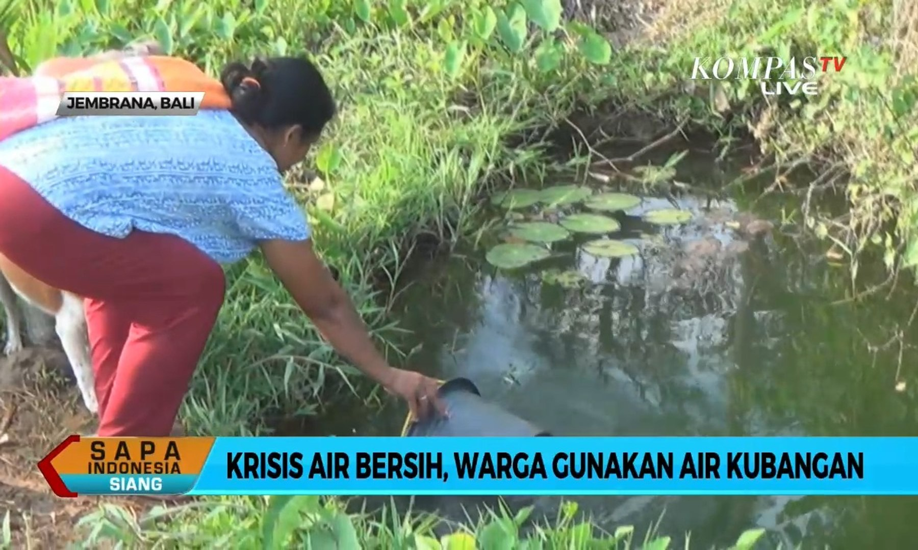 Krisis Air Bersih, Warga Gunakan Air Kubangan