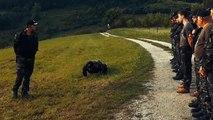 Ronde xenofobe al confine sloveno