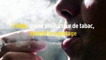 L'Inde, grand producteur de tabac, interdit le vapotage