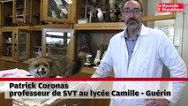 VIDEO. Poitiers : les animaux du lycée Camille-Guérin ont rendez-vous avec les Journées du patrimoinese