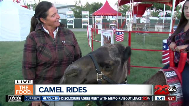 Camel rides at Kern County Fair
