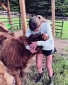 Instant cute ! Besoin de câlins... Regardez cette adorable vidéo de cette vache qui se fait chouchouter par sa propriétaire