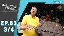 เปิดตำนานกับเผ่าทอง ทองเจือ | น้ำตาลสดเมืองทวาย ประเทศพม่า | 22 ก.ย.62 (3/4)