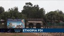 Ethiopia FDI [Business Africa]