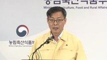 """[현장영상] 농식품부 """"돼지고기 도매가격 6%하락, 경매시장 안정될 것"""" / YTN"""