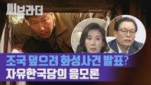 자유한국당의 음모론 '조국 시국선언 덮으려 화성연쇄살인 사건 발표' [씨브라더]