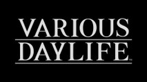 Various Daylife - Bande-annonce