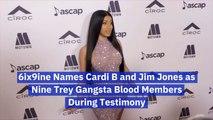 Cardi B Possibly A Nine Trey Gangsta Blood Member