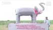 Elephants Become Headache For Chhattisgarh Villagers