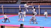 North Korea celebrates founding anniversary of international martial arts committee