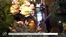 BOTANIQUE Des fleurs pour habiller Chaumont