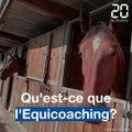Qu'est-ce que l'Equicoaching?