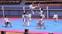 Kuzey Koreli sporculardan nefes kesen tekvando şöleni
