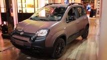 Fiat Panda Trussardi - Intervista con Olivier François, President Fiat Brand Global