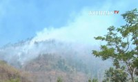Kebakaran Hutan Gunung Gajah Terus Meluas