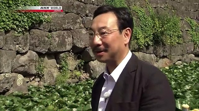 Japanology Plus - Restoring Castles