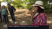 Contes et légendes : le mystère des dolmens de la Roche-aux-Fées