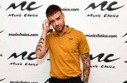 Liam Payne diz que Louis Tomlinson era uma 'diva' da moda