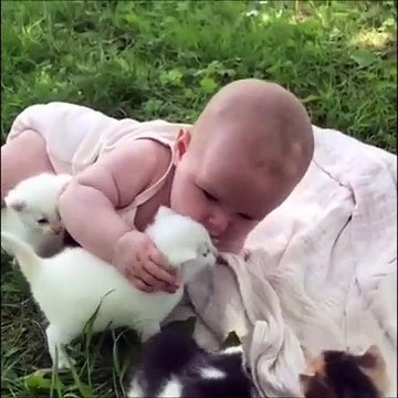 Cute Baby Playing With Kittens Most Adorable Baby Video Ever
