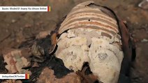 Ancient Egyptians Mummified This Crocodile With Last Meal In Stomach