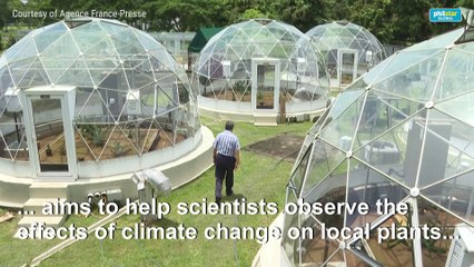 Panama project simulates effect of climate change on tropical plants