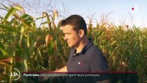 Pesticides : ces agriculteurs qui changent leurs pratiques