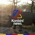 Sudan, le dernier rhinocéros mâle blanc, va mourir
