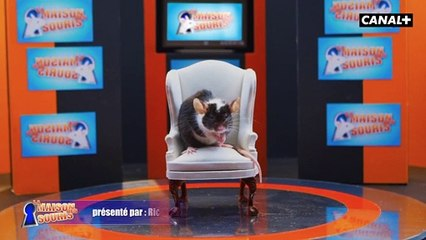 La maison des souris - dès le 21 octobre seulement avec CANAL+