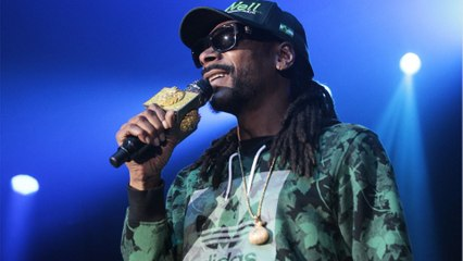 7 Celebrities Getting (Financially) High Off of the Budding Legal Weed Business