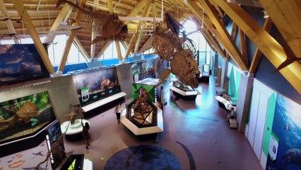 Sur les traces des dinosaures #2   Sur les routes de la science Alberta