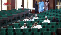 Investigate all NGO's in Nigeria - Elumelu