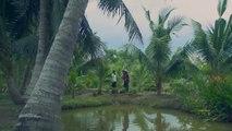Tiếng Sét Trong Mưa tập 36 – Có link tập 37 và trọn bộ bên dưới - Phim Việt Nam THVL1 - Phim tieng set trong mua tap 36