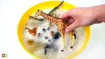 Learn Zoo Wild Animals and Sea Animal Names Education Video _ Aprende Zoo Animal