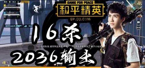 奇怪君和平精英:16杀2036输出吃鸡Pubg Mobile/Game For Peace