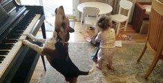 Quand un bébé et un chien décident de faire un concert ensemble, ça donne ça !