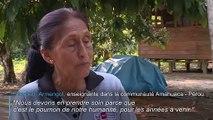 Alarme mondiale sur les feux de forêt en Amazonie
